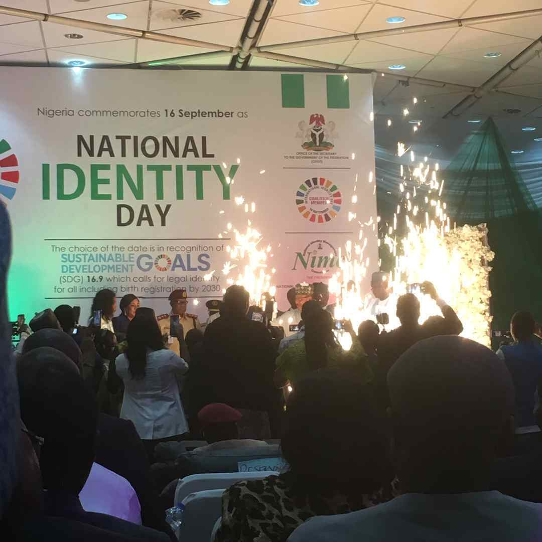 NIMC  Nigerian Diaspora Identity National Identification Number NIN